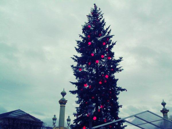 Главная рождественская елка на площади Concorde