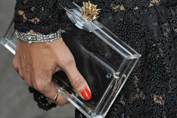 Прозрачный клатч из пластика Charlotte Olympia