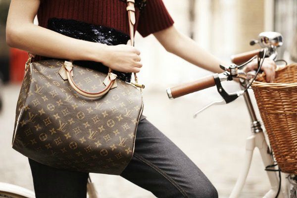 Сумка Louis Vuitton Speedy