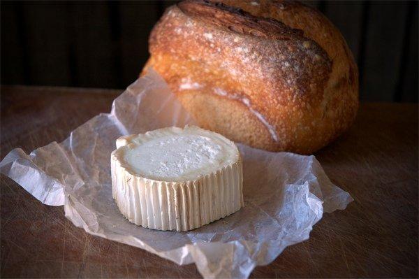 5 сыров, которые обязательно стоит попробовать, часть 3 - сыры из козьего молока