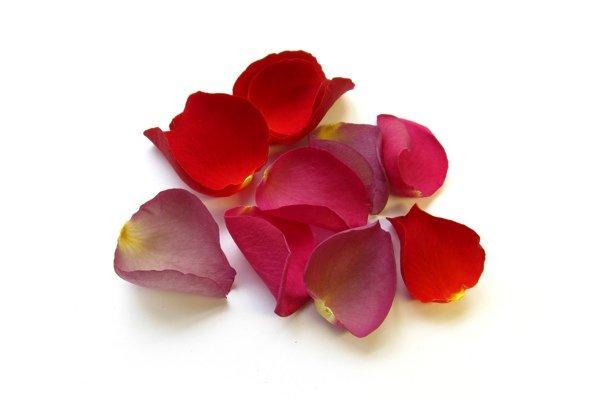 Съедобные цветы: 5 самых вкусных цветов и советы по употреблению