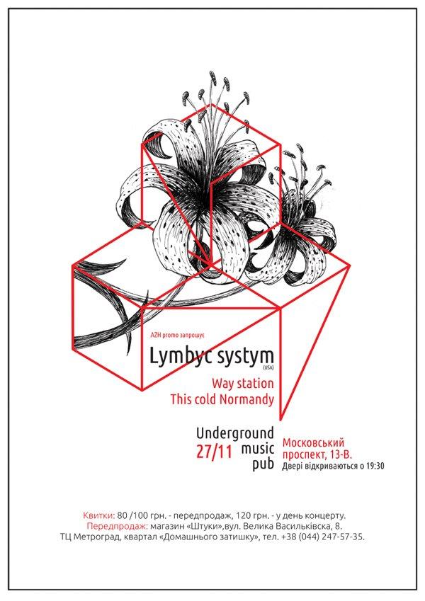 lymbyk_systym