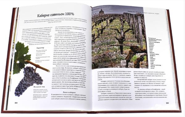 """Simple Wine News выпустили книгу """"Просто о лучших винах. Новая энциклопедия"""""""