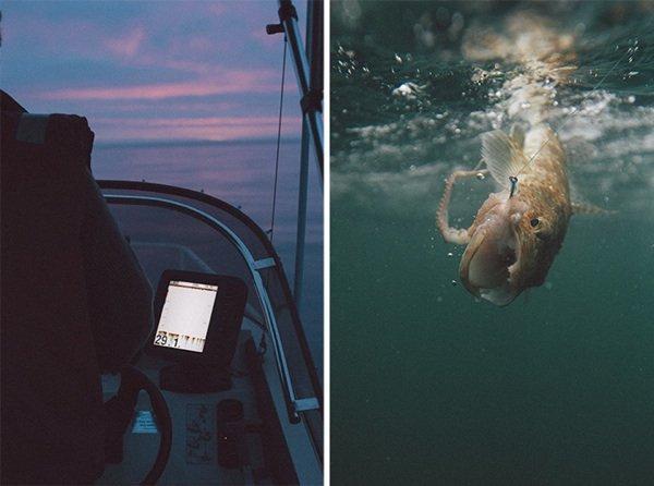 Food-фото: Island Menu - побольше рыбы
