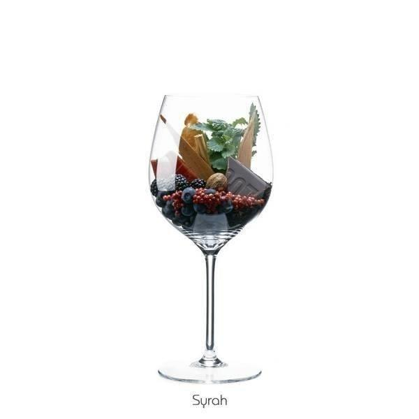 Food-фото: палитра вкуса - наглядная винная ароматика