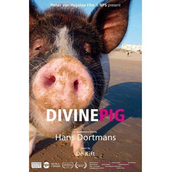 На пути к вегетарианству: документальный фильм «Священная свинья» - правдиво о мясе