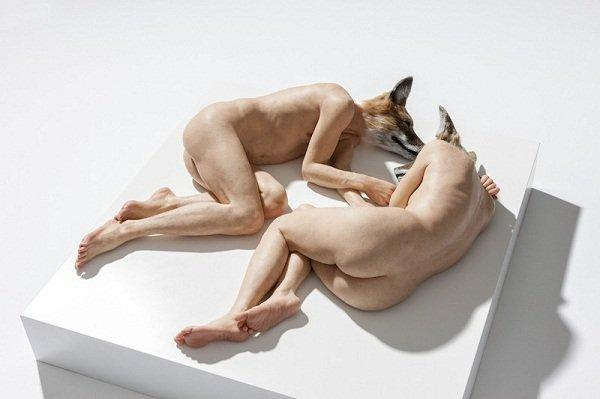 Sam Jinks : Unsettled Dogs 2012 / Sullivan + Strumpf