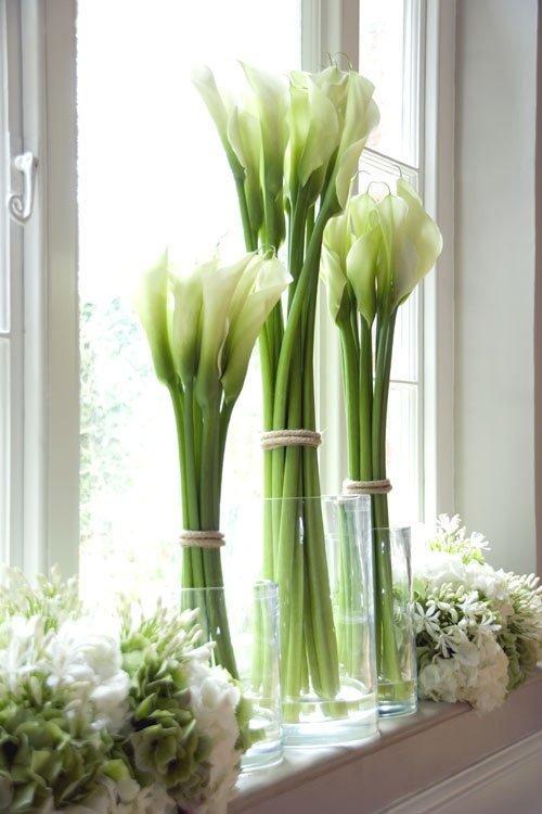 Цветы на длинной ножке