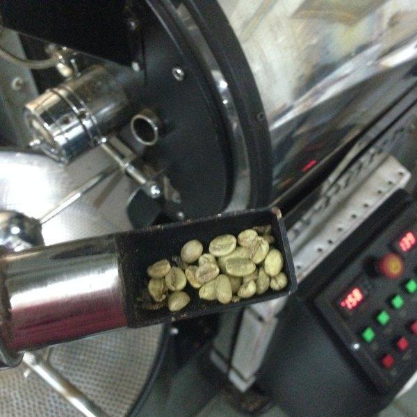 только что загруженный зеленый кофе в сэмплере