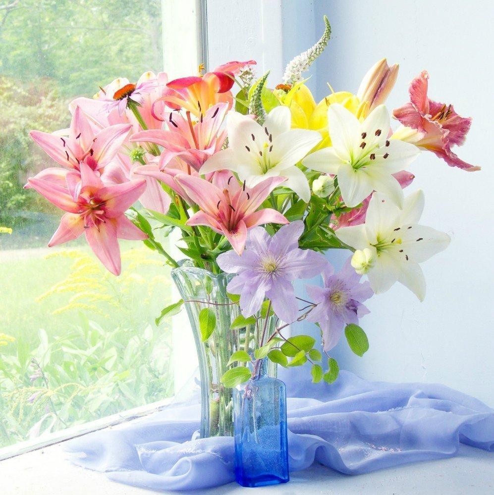 Многолетние неприхотливые цветы для сада с