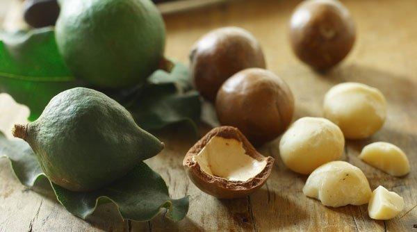 7 фактов об орехах макадамия