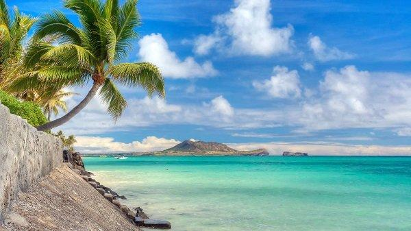 beaches (3)