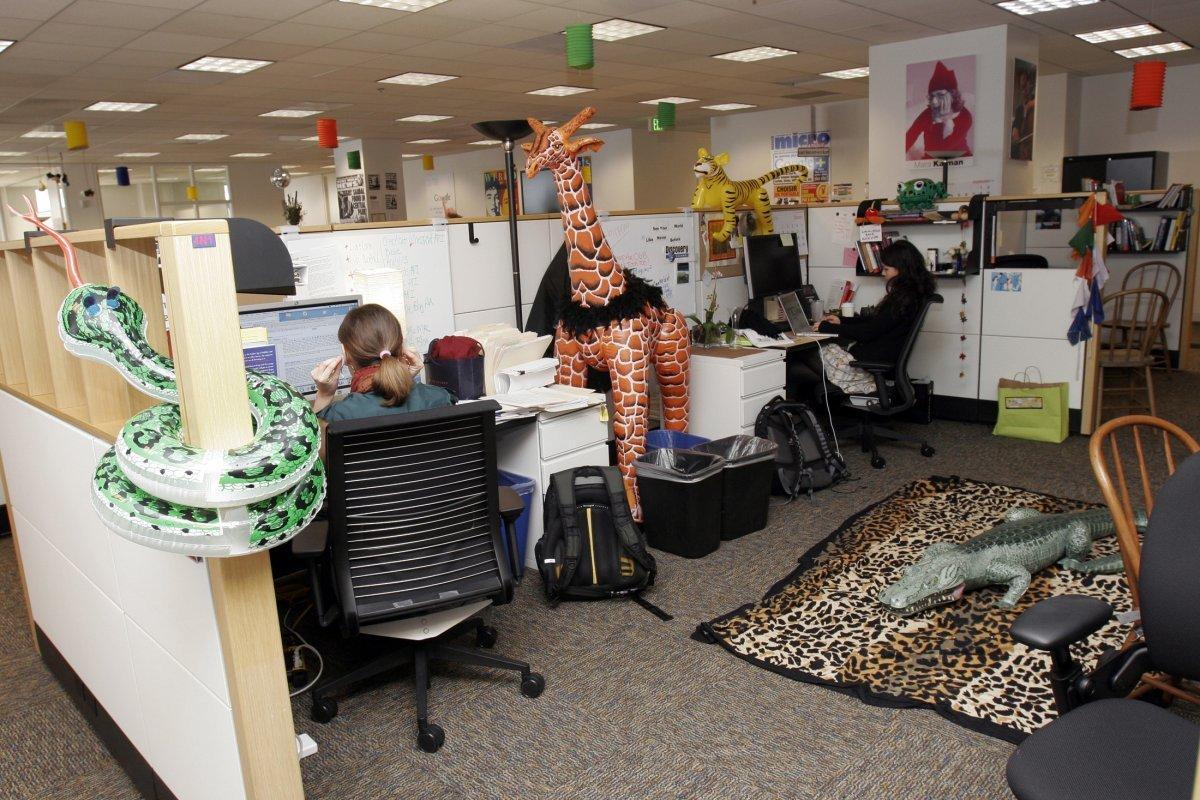 Картинке, смешные картинки из офиса