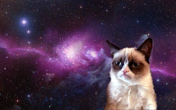 Grumpy-Cat-in-Space