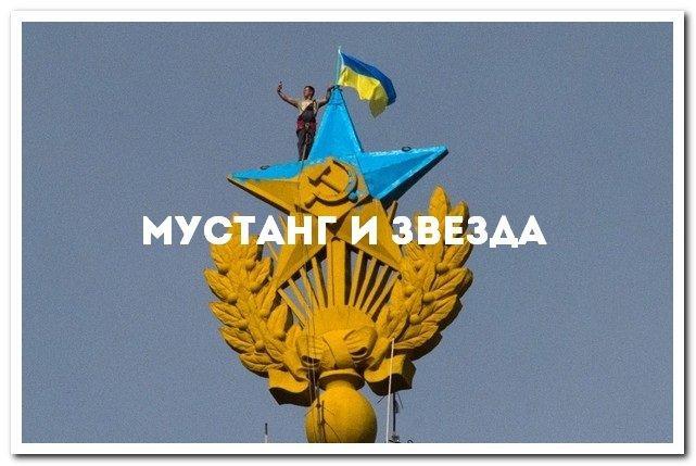 d593kotly-ukranian-star-53f462c14d891