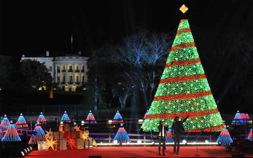 Вашингтонская елка, на которую каждый день смотрит из своего рабочего окошка Барак Обама. Дизайн и освещение - разработка Google. За смену цветовых рисунков отвечает программный код, разработанный сотрудницей компании.