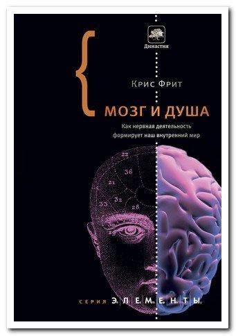 mozg-i-d_923