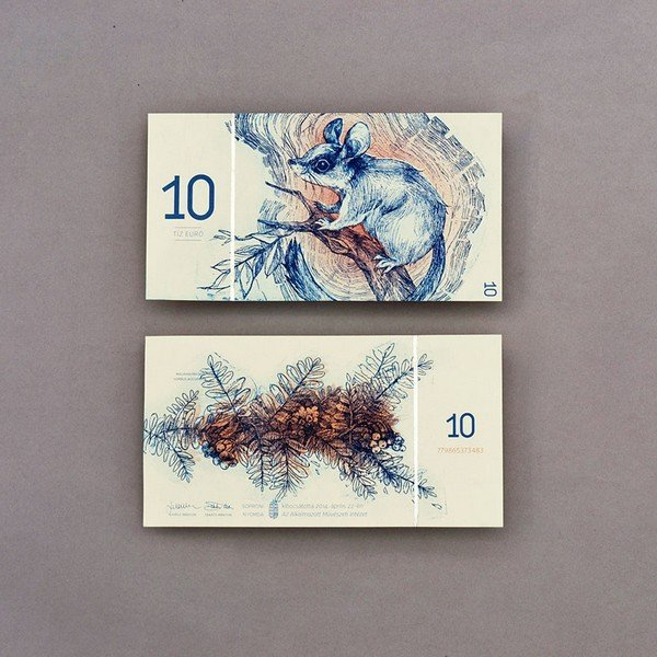 hungarian-money-concept-euro-barbara-bernat-9