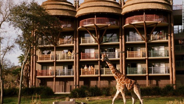131108154607-family-hotels-disney--animal-kingdom-horizontal-large-gallery