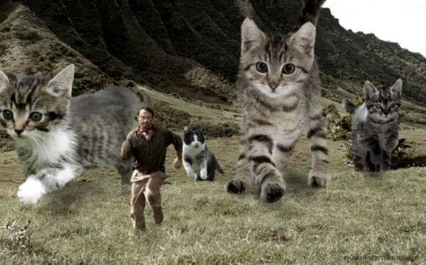 someone-replaced-all-of-the-dinosaurs-in-jurassic-park-with-cats-21-photos-12