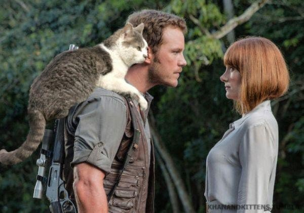 someone-replaced-all-of-the-dinosaurs-in-jurassic-park-with-cats-21-photos-16