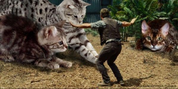 someone-replaced-all-of-the-dinosaurs-in-jurassic-park-with-cats-21-photos-17