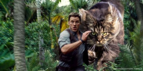 someone-replaced-all-of-the-dinosaurs-in-jurassic-park-with-cats-21-photos-21
