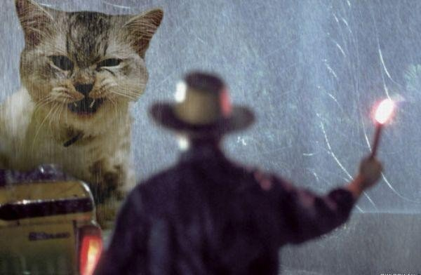 someone-replaced-all-of-the-dinosaurs-in-jurassic-park-with-cats-21-photos-4
