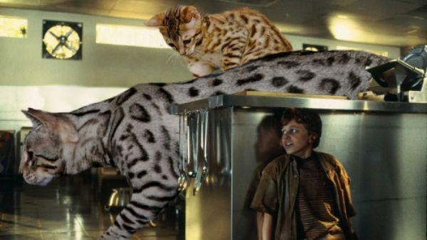 someone-replaced-all-of-the-dinosaurs-in-jurassic-park-with-cats-21-photos-6