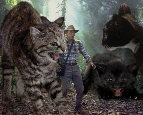 someone-replaced-all-of-the-dinosaurs-in-jurassic-park-with-cats-21-photos-7