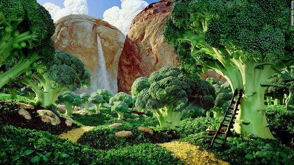 150623153029-foodscapes-carl-warner--broccolli-super-169
