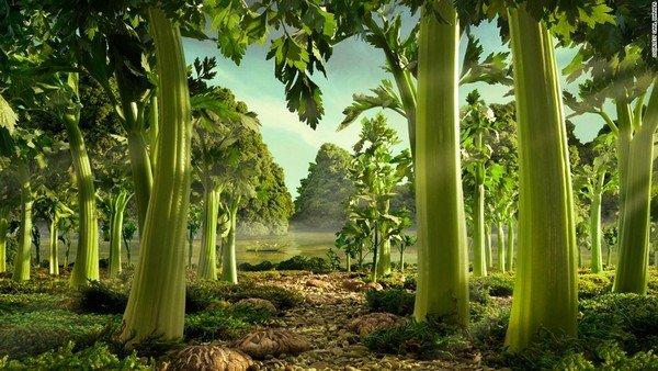 150623153050-foodscapes-carl-warner--celery-super-169