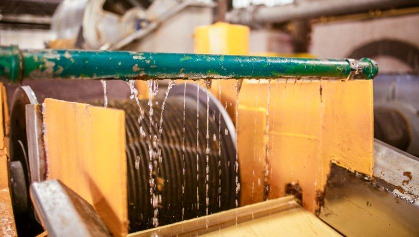 Брожение и ферментация агавы