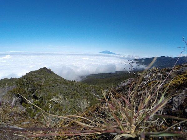 Килимандджаро. День 2