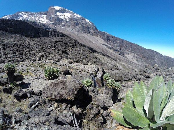 Килиманджаро. Гора