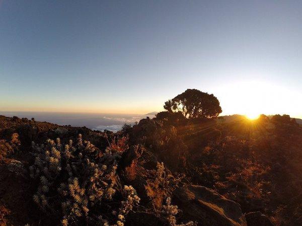 Килиманджаро. Солнце