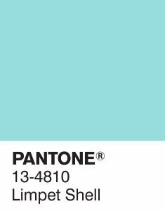 13-4810-limpet-shell-pantone-fashion-color-report-primavera-2016