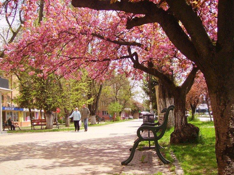 113821-e1459525148883 5 Мест, которые стоит посетить в Украине в апреле