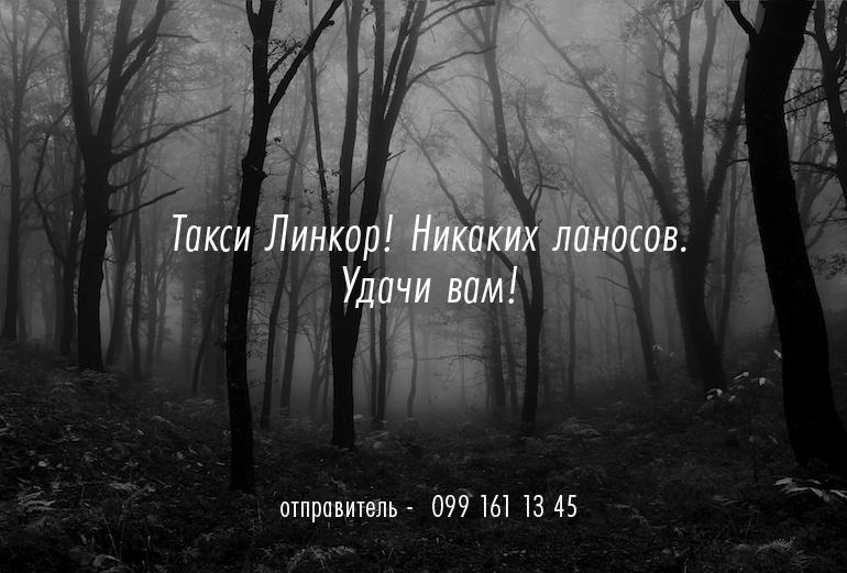 567d85f4370b4151da5342013