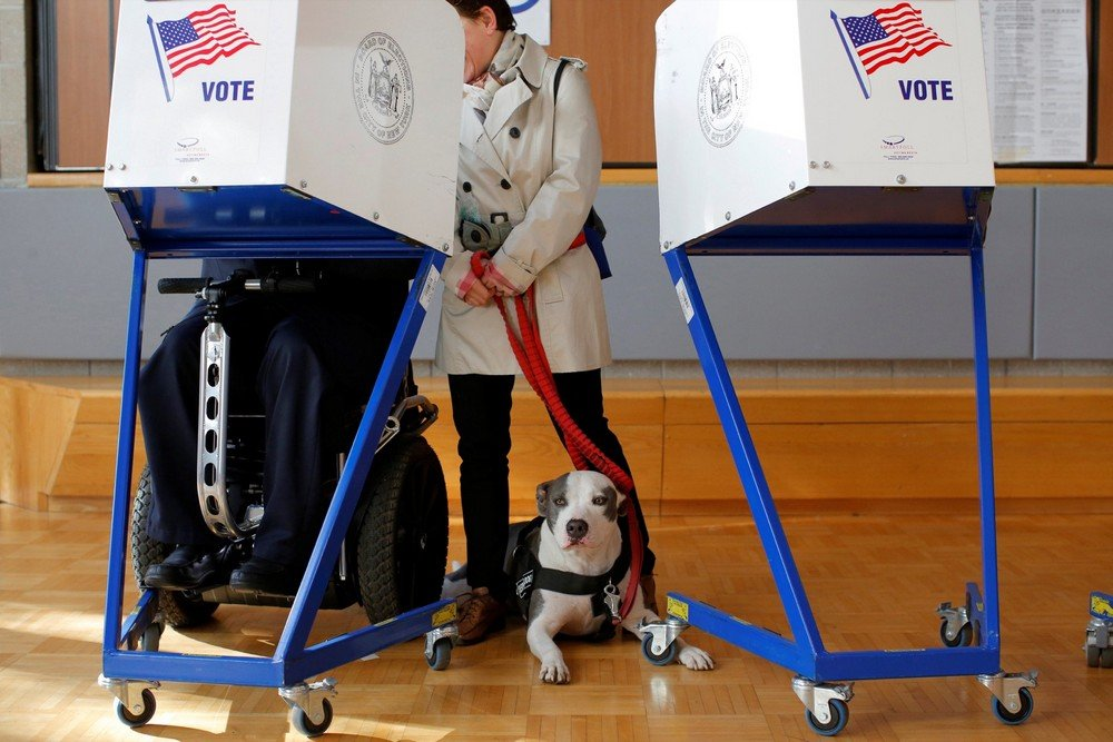 Picasso the pit bull waits as its owner George Gallego fills out his ballot with his wife Julia Gallego during voting for the U.S presidential election at the James Weldon Johnson Community Center in the East Harlem neighborhood of Manhattan, New York, U.S