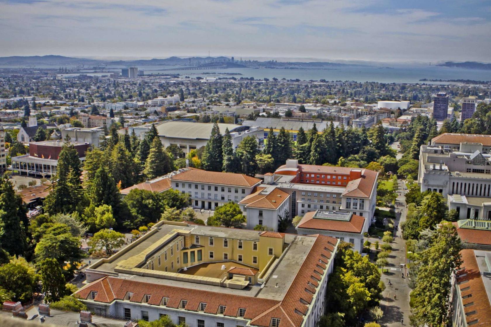university of california berkeley essays