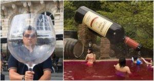 Где выпить вина в Киеве. 10 лучших винных баров