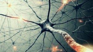 Лекция дня: «15 минут о нейросетях» от проекта 15×4