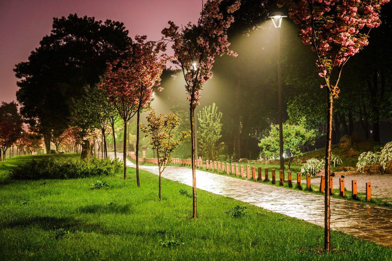 Парк «Киото»